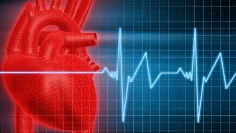Частота пульсу здорової людини