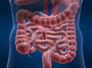 Що відбувається при дисбактеріозі кишечника?