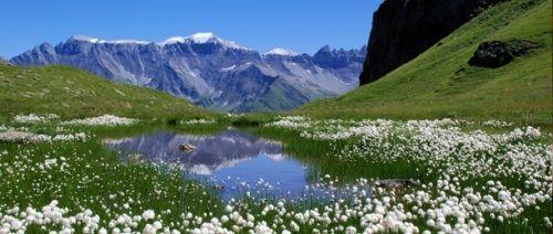 Гірський воздухвліяніе гір на здоров`я людини