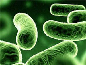 Скільки триває дисбактеріоз